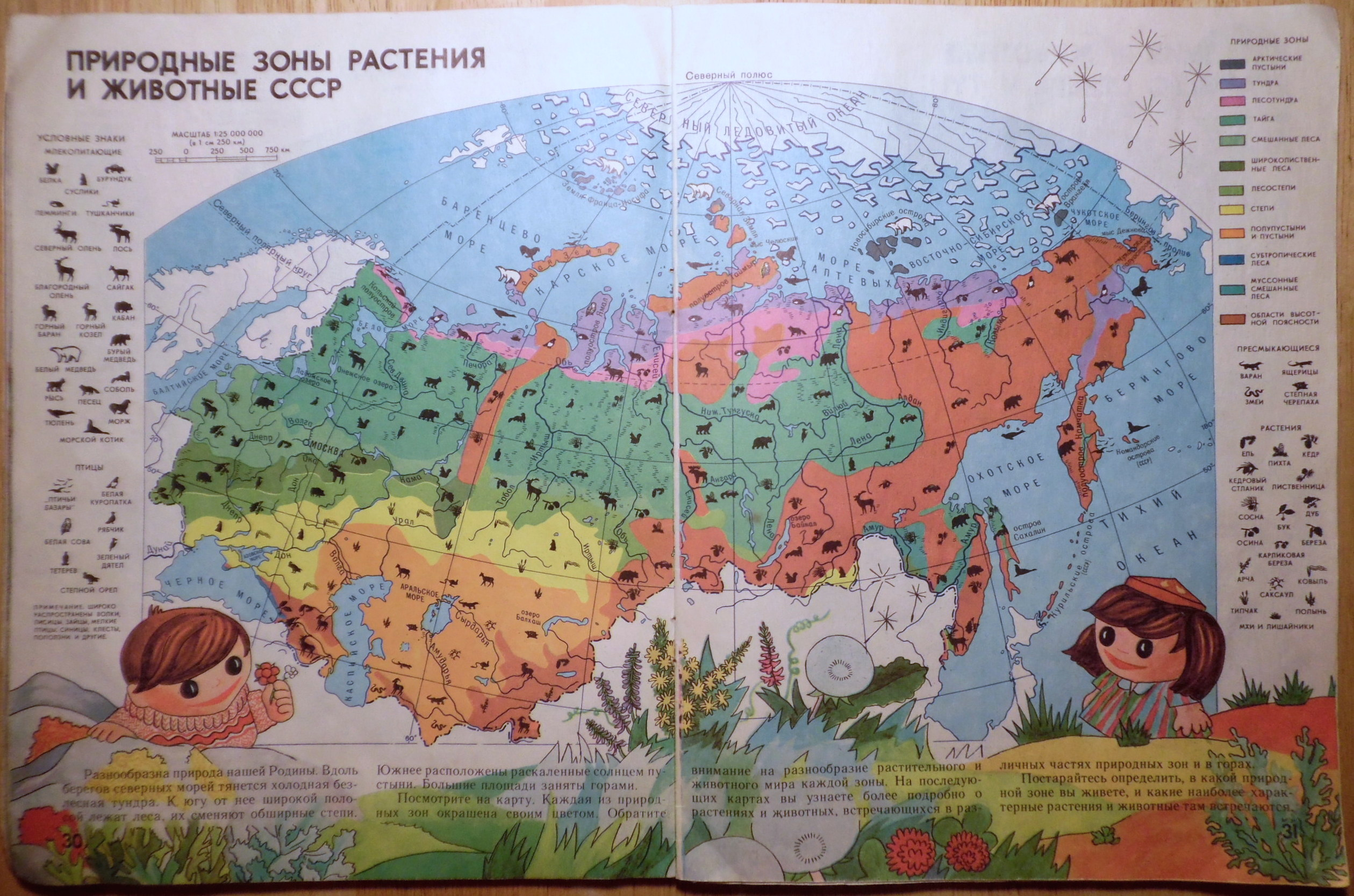 Biomes of the USSR
